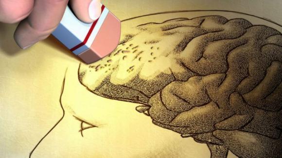 UdA: Alzheimer, 750 mila dollari per l'equipe del professore Stefano Sensi